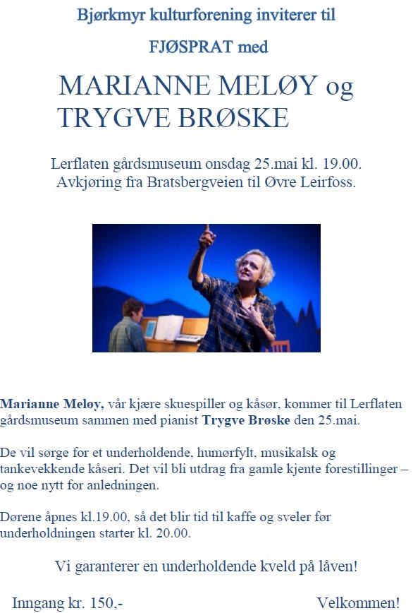 Marianne Meløy flyer